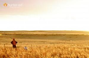 somedays (1)