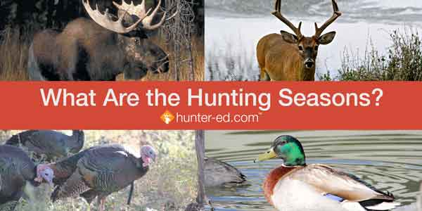 what are the hunting seasons?