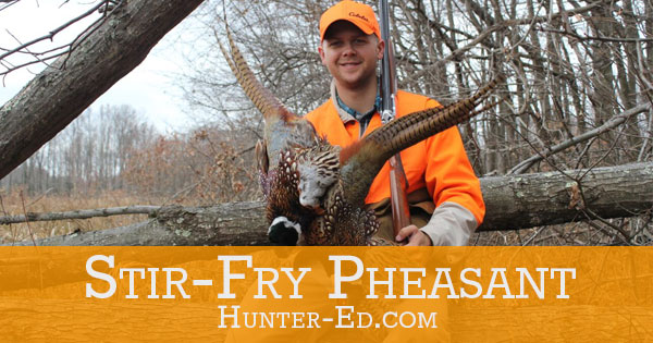 Stir-Fry Pheasant Recipe