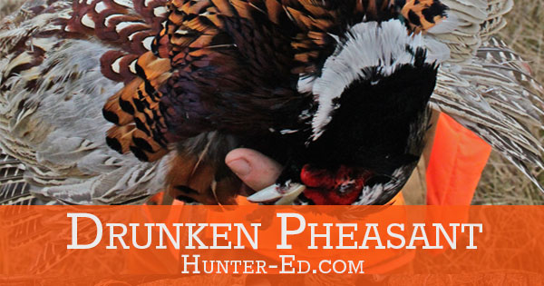 Drunken Pheasant Recipe