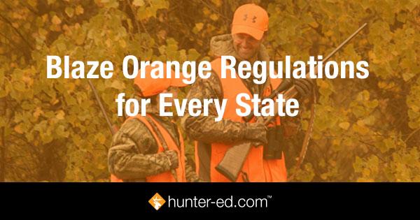 Blaze Orange Regulations for Every State